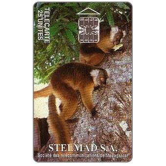 Madagascar, 1994